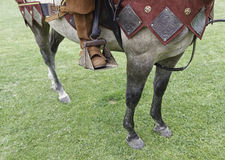 Medieval horse. Detail of a horse dressed for war Stock Photo