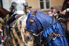 Medieval horse. A blue-clad medieval style horse and rider in armour Royalty Free Stock Image