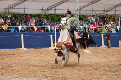 Medieval joust Stock Image