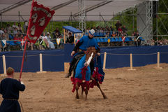 Medieval joust Royalty Free Stock Photo