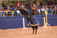 Medieval joust Royalty Free Stock Image