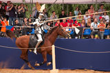 Medieval joust Stock Photo