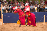 Medieval joust Stock Images