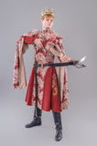 Medieval King Royalty Free Stock Photos