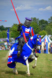 Medieval knight magnificence Royalty Free Stock Photo