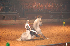 The medieval knight shows horse training Royalty Free Stock Images