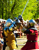 Medieval knights in battle Royalty Free Stock Image