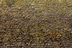Medieval la pared de ladrillo Fotos de archivo