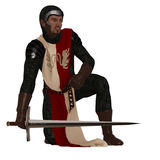Medieval man at arms. Fantasy Norman style medieval soldier in chain mail and tabard holding sword Stock Photography
