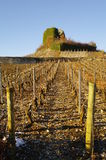 Medieval old tower in vineyard. Medieval old tower in middle of vineyard in french alps in winter Royalty Free Stock Photos
