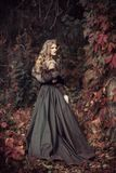 Queen in furs in the autumn forest. The medieval queen in furs in the autumn forest royalty free stock image