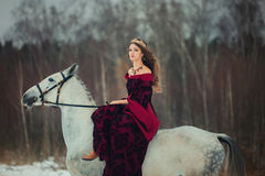 Medieval Queen portrait. Medieval Queen on white horse at twilight winter forest Stock Images