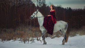 Medieval Queen portrait. Medieval Queen on white horse at twilight winter forest royalty free stock photography