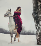 Medieval Queen portrait. Medieval Queen on white horse at twilight winter forest stock photos
