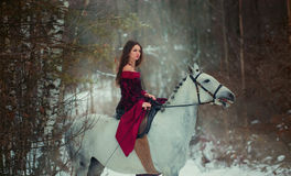 Medieval Queen portrait. Medieval Queen on white horse at twilight winter forest Stock Image
