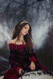 Medieval Queen portrait. Medieval Queen on white horse at twilight winter forest Stock Photography
