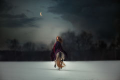 Medieval Queen portrait. Medieval Queen on white horse at twilight winter forest stock photo