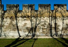 Medieval rampart wall. Stone rampart wall in Avignon, France with tree shadows Stock Image