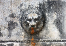 Medieval roman marble fountain in form of bas-relief lion head Stock Images