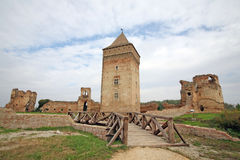 Medieval Serbian ruins Royalty Free Stock Image