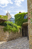 Medieval street covered on green leaves in Peretallada, Catalonia. Royalty Free Stock Photography