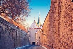 Medieval street in Tallinn Stock Photo