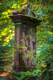Medieval tombstone in an autumn forest Stock Image
