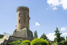 Medieval tower Stock Images