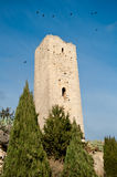 Medieval tower. Of Montady - Herault - France royalty free stock images