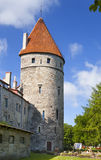 Medieval tower - part of the city wall. Tallinn, Estonia Stock Image