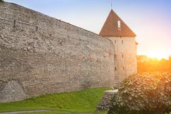 Medieval tower, part of the city wall, Tallinn, Estonia Royalty Free Stock Photo