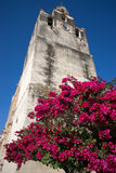 Medieval tower with red bougamville flowers in front in mexcio Stock Image
