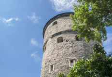 Medieval tower in Tallin. Medieval fortress tower in old town of Tallin, Estonia Stock Images