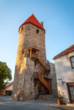 Medieval tower in Tallinn old town, Estonia Royalty Free Stock Photos