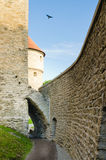 Medieval towers of Tallinn Royalty Free Stock Image