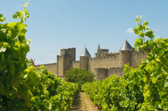Medieval town of Carcassonne and vineyards Stock Images