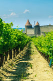 Medieval town of Carcassonne and vineyards. Medieval town of Carcassonne and green vineyards Stock Image