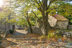 Medieval town ruins and tree in autumn Stock Photography