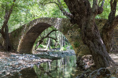 Medieval Venetian bridge in Cyprus. In summer forest Stock Images