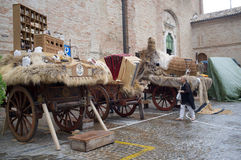 Medieval wagons Royalty Free Stock Photos