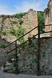 Medieval wall with stairs and some plants with flowers on it in Neive. Medieval wall with stairs and some plants with flowers on it stock image