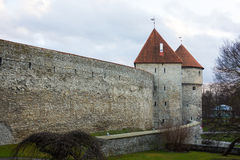 Medieval wall and tower in old Tallinn city Stock Photography