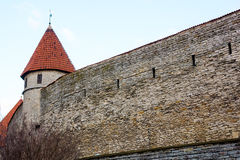 Medieval wall and tower in old Tallinn city Royalty Free Stock Photo