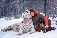 Medieval warrior hugs white tiger. Man dressed as a medieval warrior sits in the snow in a winter forest and hugs a white tiger by the neck. The warrior is stock photo