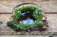 Medieval window with flowers pots Royalty Free Stock Image