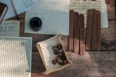 Medieval writing. Tools for ancient writing. Mascara and feathers stock image