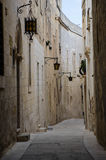 medina Images stock