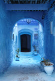 Medina of Chefchaouen, Morocco. Street in the blue medina of Chefchaouen, Morocco Stock Photography