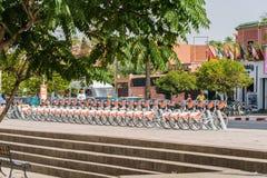 Medina cyklar väntande på kunder i mitten av staden Royaltyfria Bilder