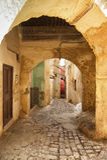 Medina Meknes, Maroko Obrazy Royalty Free